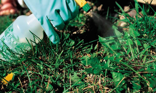 Fertilizer and Weed Control Services Wisconsin